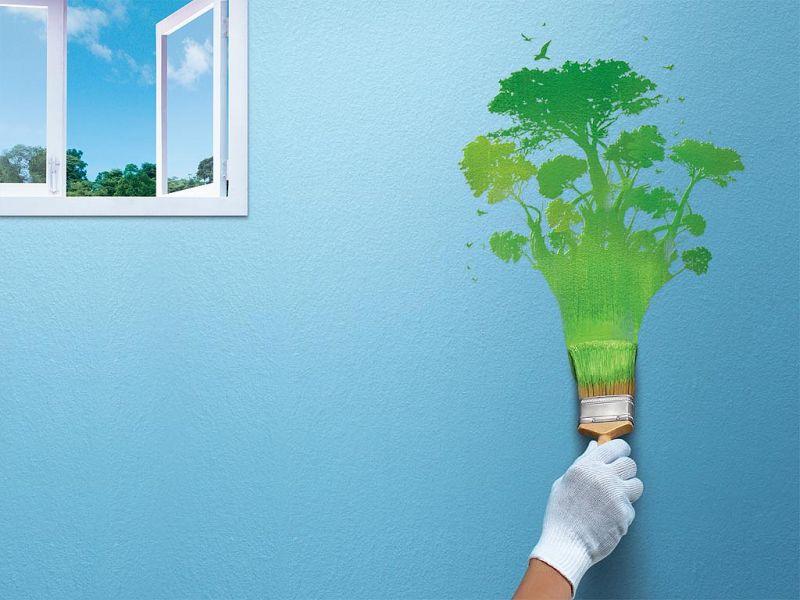 Экологически чистые краски для стен: топ-3