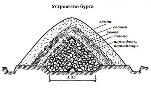Схема бурта для хранения овощей