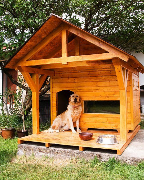 будка для собаки своими руками