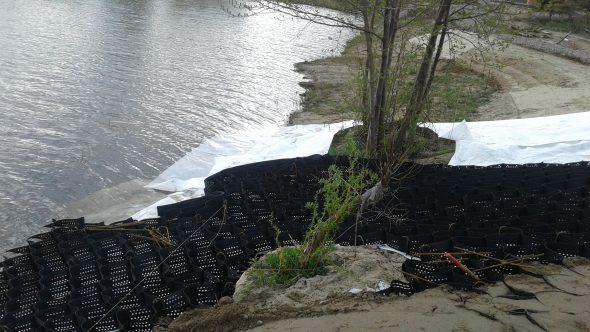 укрепление берега биоматами и растениями