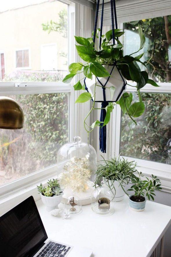 подвесные цветы в горшках в интерьере