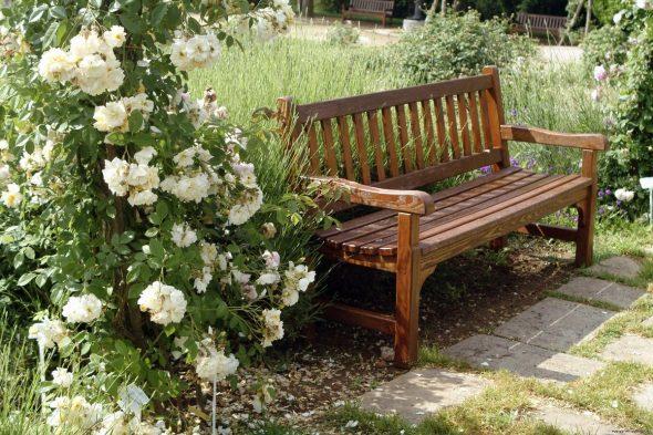 Деревянная скамейка в саду