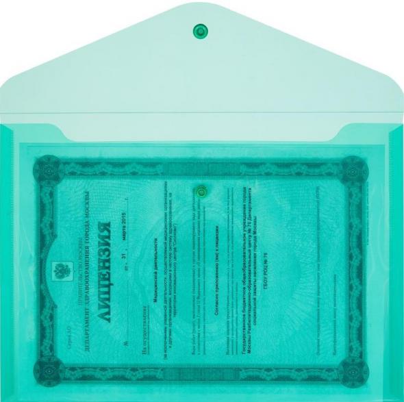 Папка-конверт для документов