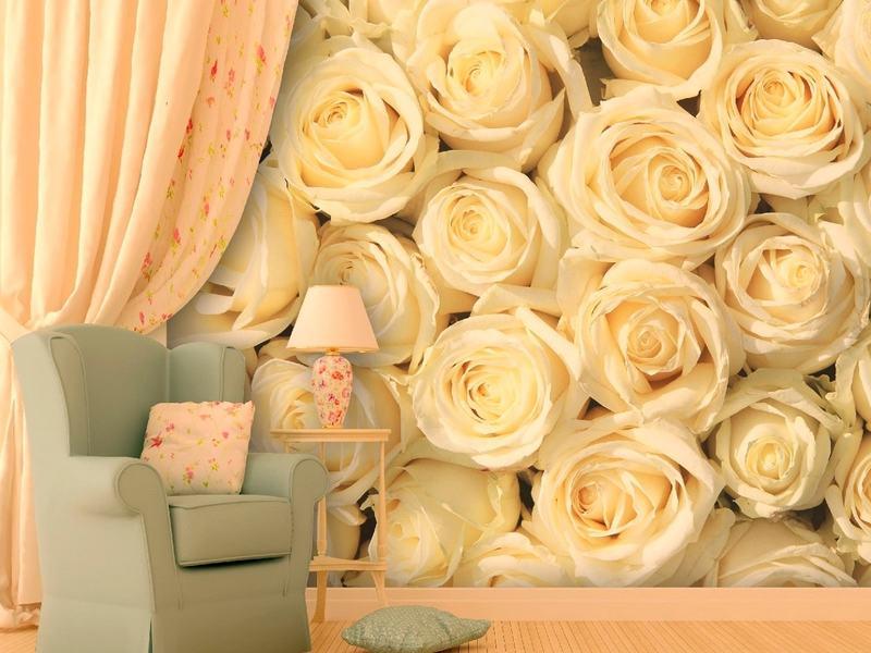 Фотообои с изображением роз: создание романтичного интерьера