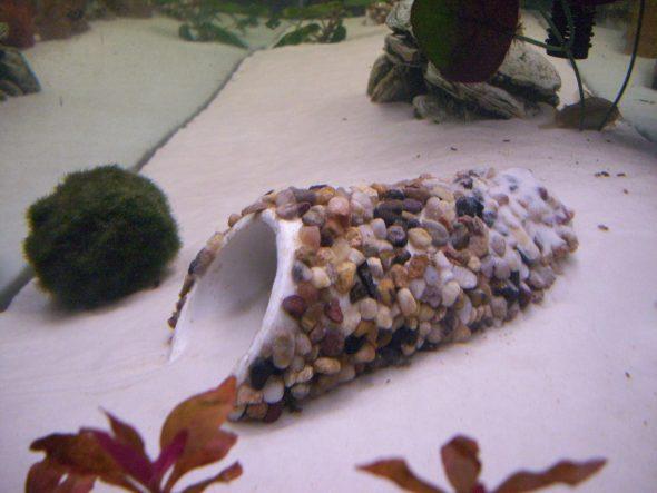 Украшение для аквариума из трубы