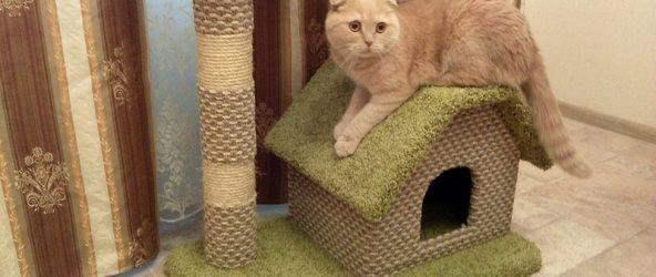 Мастер-класс по изготовлению домика для кошки из джута