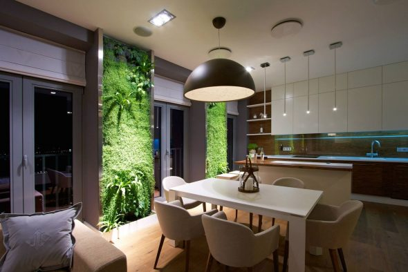 Кухня-гостиная в экостиле