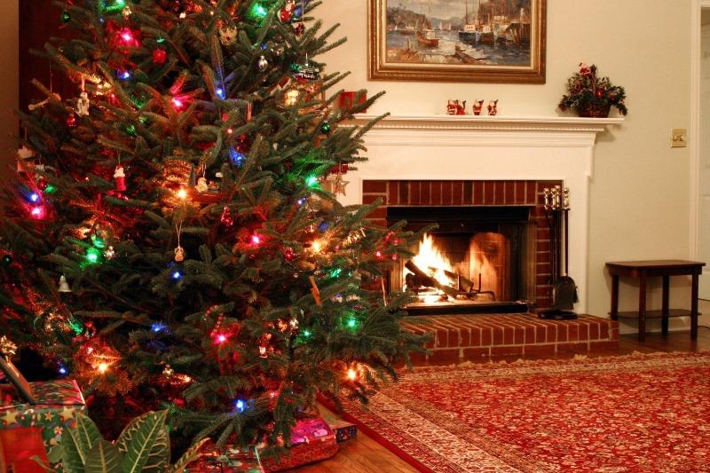 Как сделать так, чтобы живая елка не сбросила иголки к Новому году